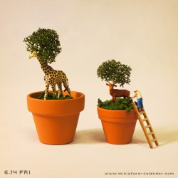 Plant?