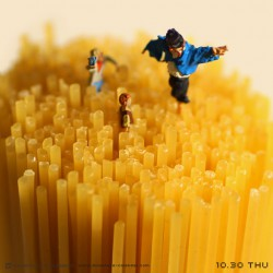 Pasta field