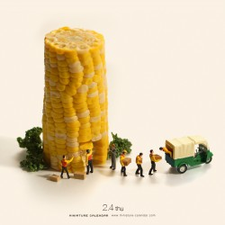 Corn delivery