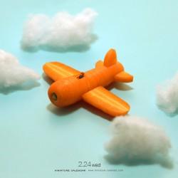 Carrot's pilot