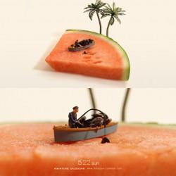 Seed fishing