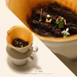 Organic Coffee?