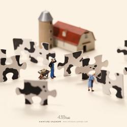Puzzle Cow