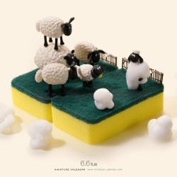 Foam Farm