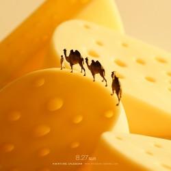 Cheese Desert