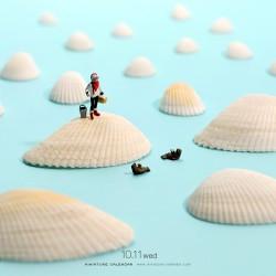 Shell Ocean