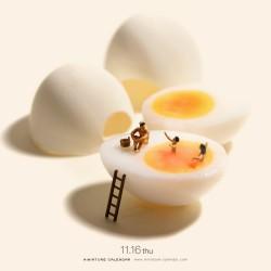 Egg Spa